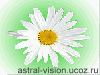 astralproection.ucoz.ru